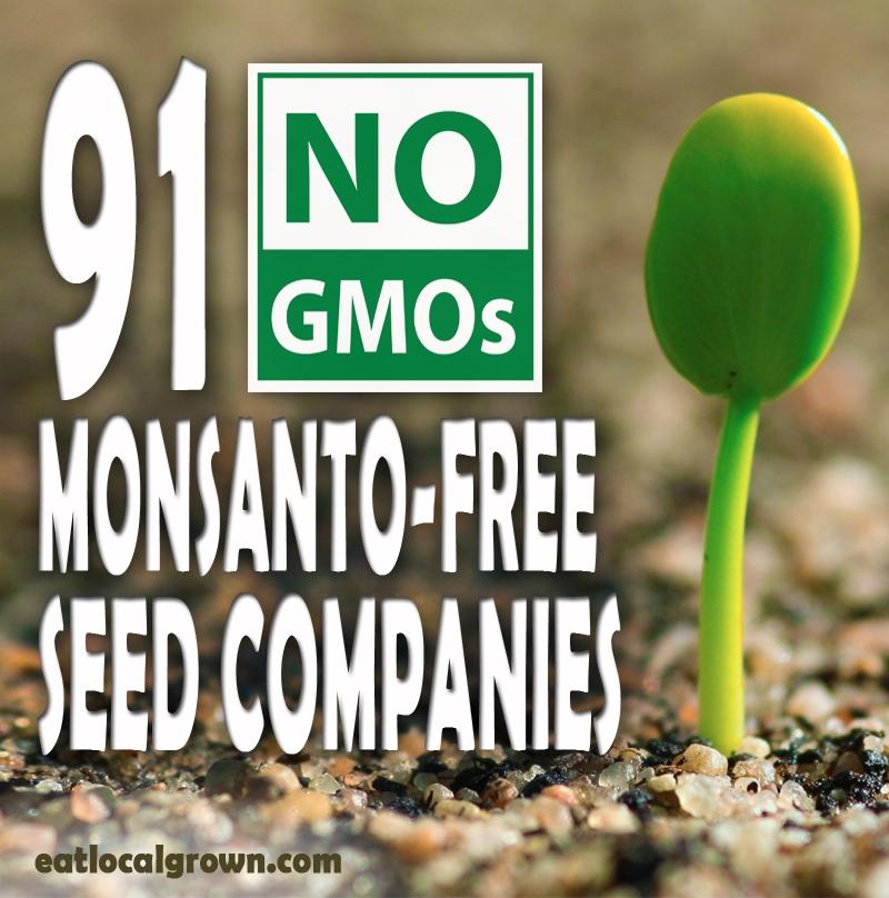 91 No Gmo Monsanto Free Seed Companies Eco Snippets