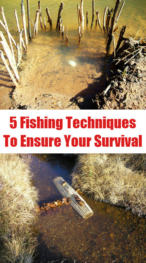 5 Fishing Techniques To Ensure Your Survival...