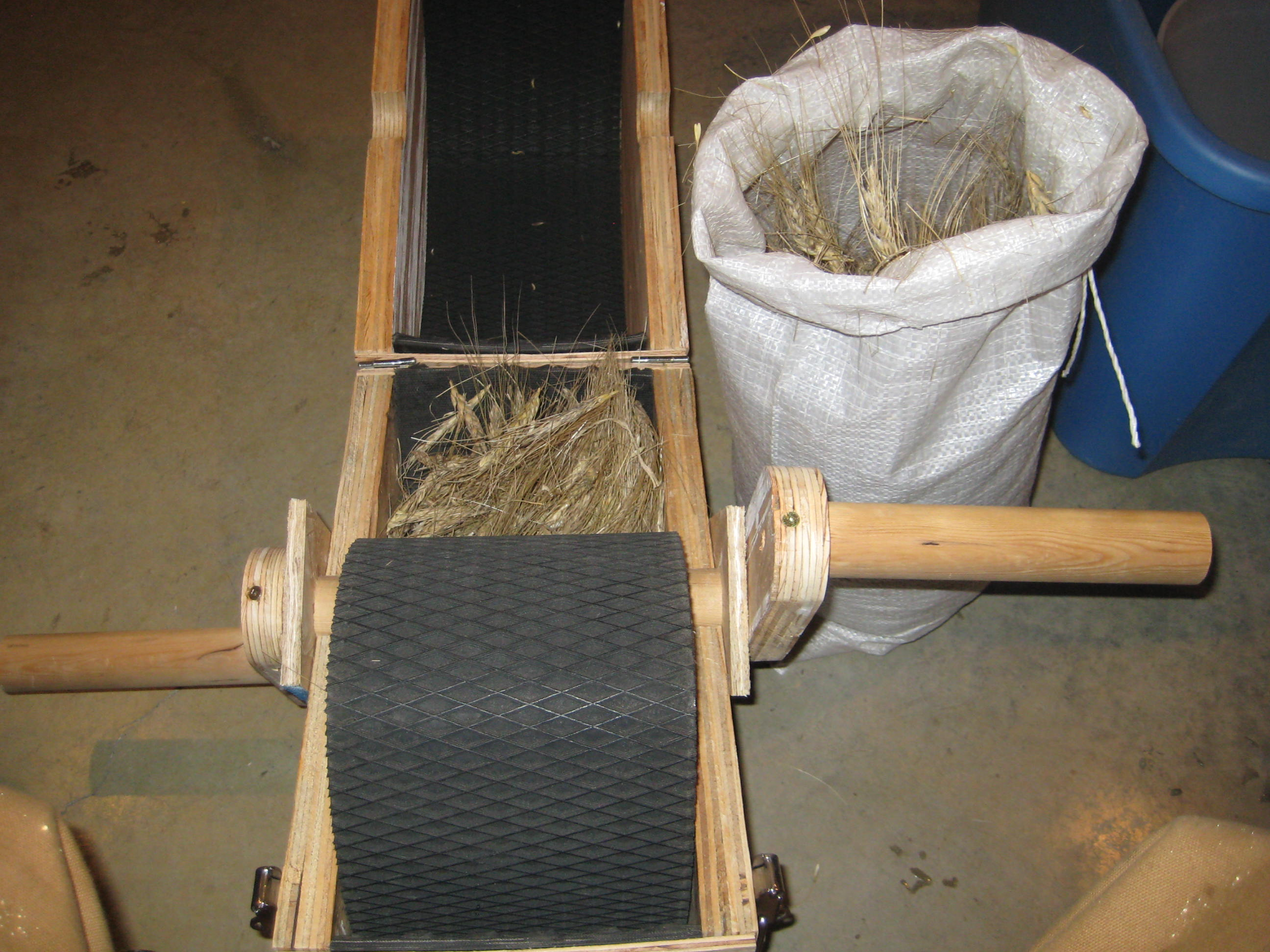 Threshing Grain On A Small Scale Eco Snippets
