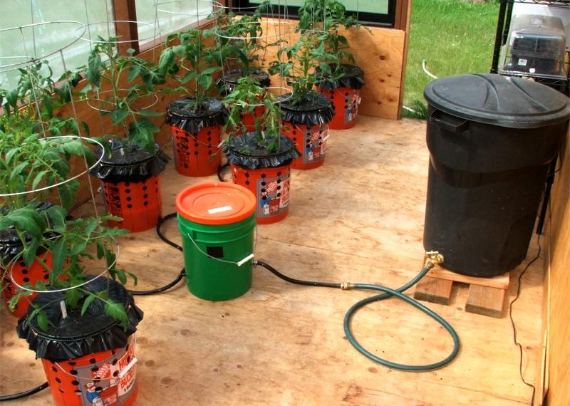 Self Watering Container Garden System Eco Snippets
