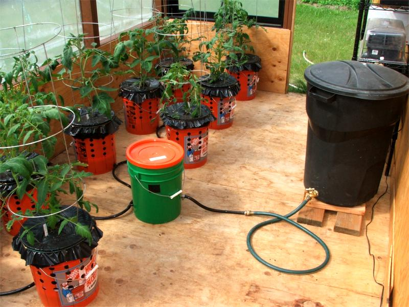 Self watering container garden system eco snippets - Self watering 5 gallon bucket garden ...
