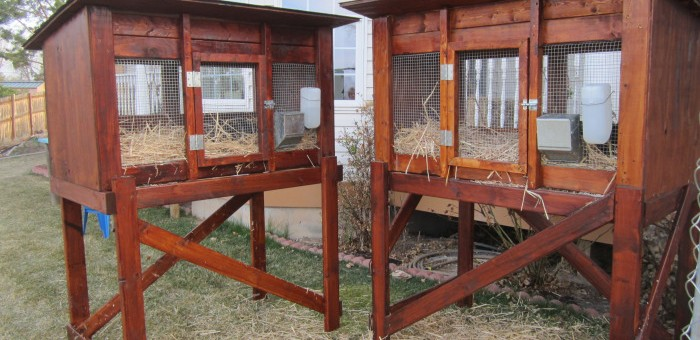 Diy Rabbit Hutch Instructions