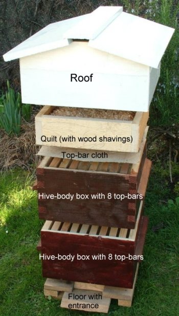 How To Build A Bee Hive - Eco Snippets