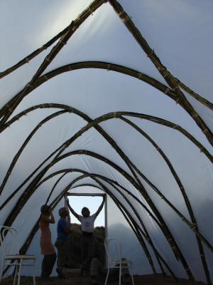 How To Make A Bamboo Polytunnel Eco Snippets