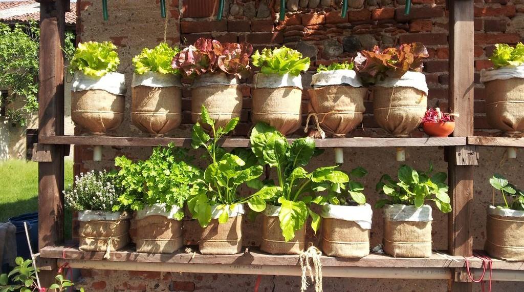 Etonnant ... Vertical Garden With Recycled Water Bottles. 0