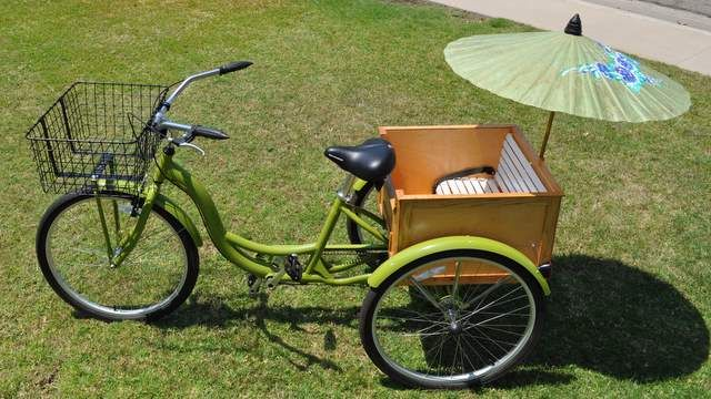 A Cool Little A Bicycle Rickshaw Eco Snippets