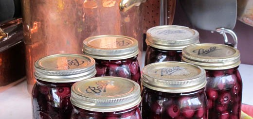 canning-blueberries-suvir-18