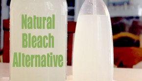 natural-bleach-alternative