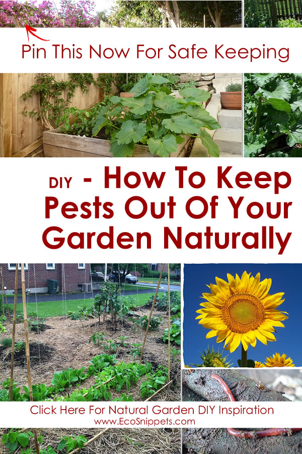 how to keep pests out of your garden naturally with worm composting eco snippets
