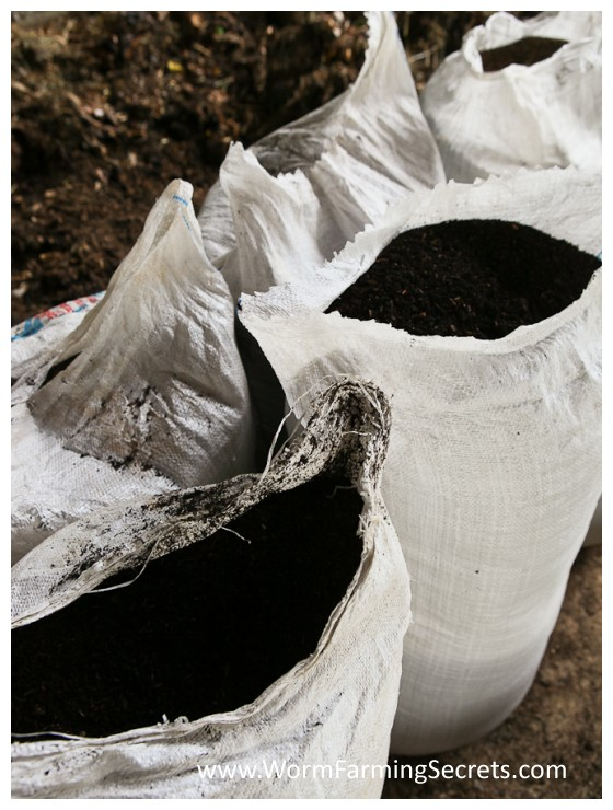Fresh Nutrient Rich Worm Castings...