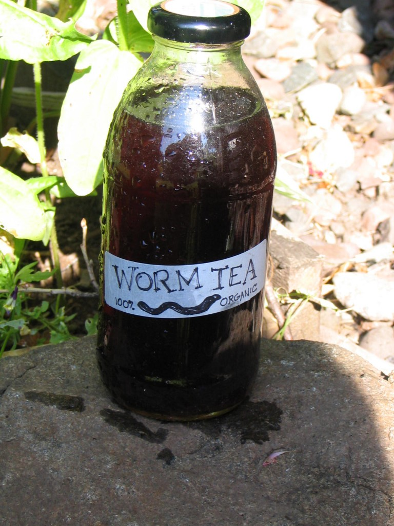 Quick & Easy, Secret Brew To Grow Your Plants 3 Times Faster…