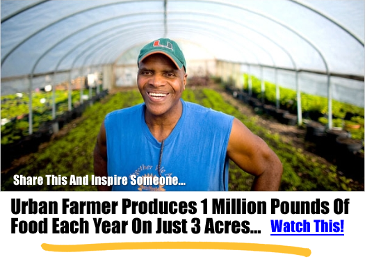 Urban Farmer Produces 1 Million Pounds Of Food Each Year On Just 3 Acres…