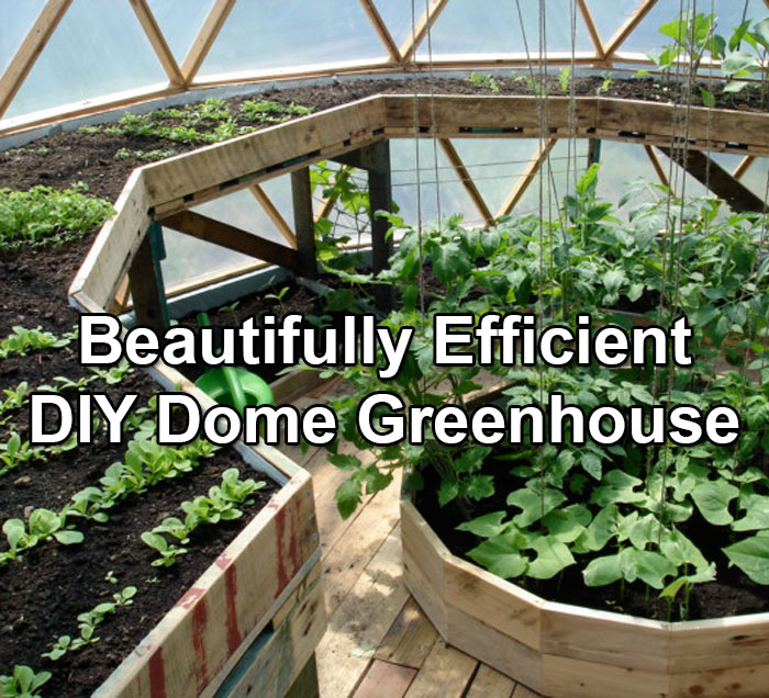 Dome Home Kits And Plans: A Beautifully Constructed DIY Dome Greenhouse…