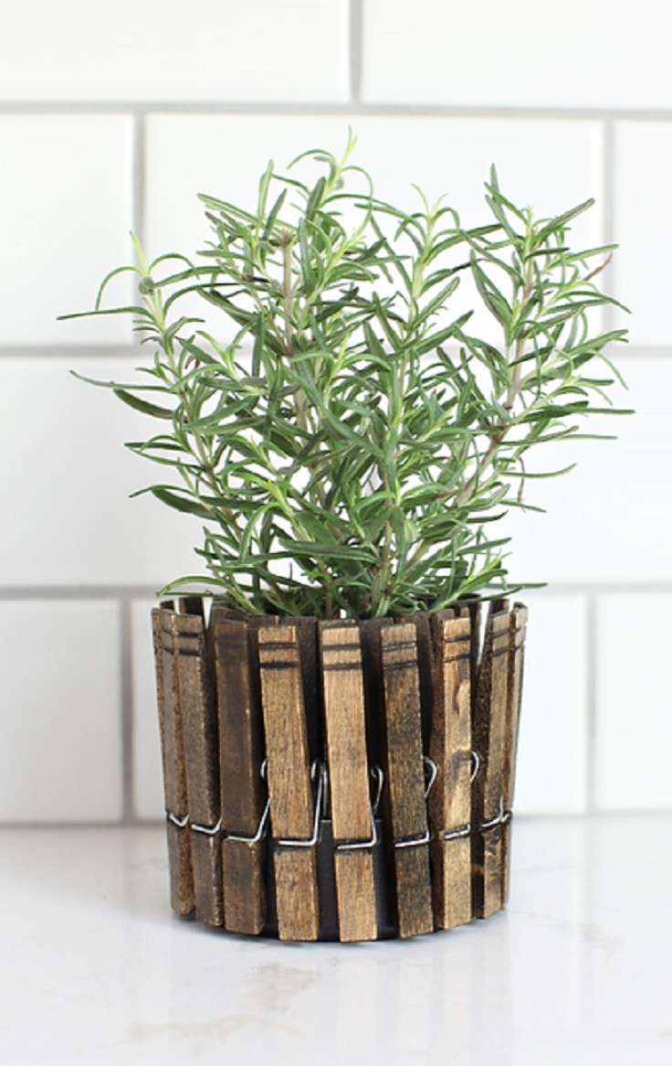 Inspiring Low Budget Unique Ideas For Herb Containers