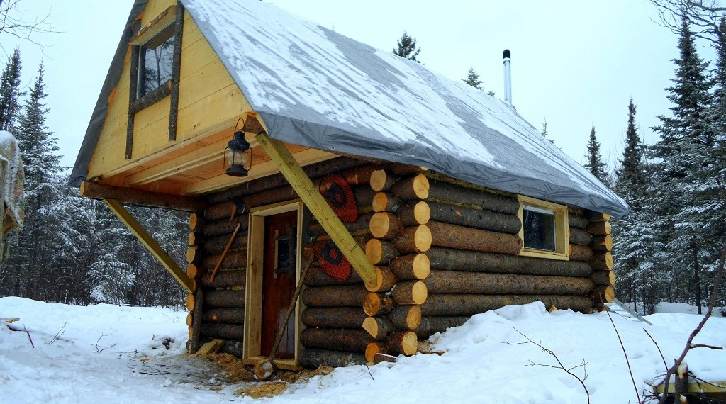 How To Build A Cozy Log Cabin For Less Than 500 Eco