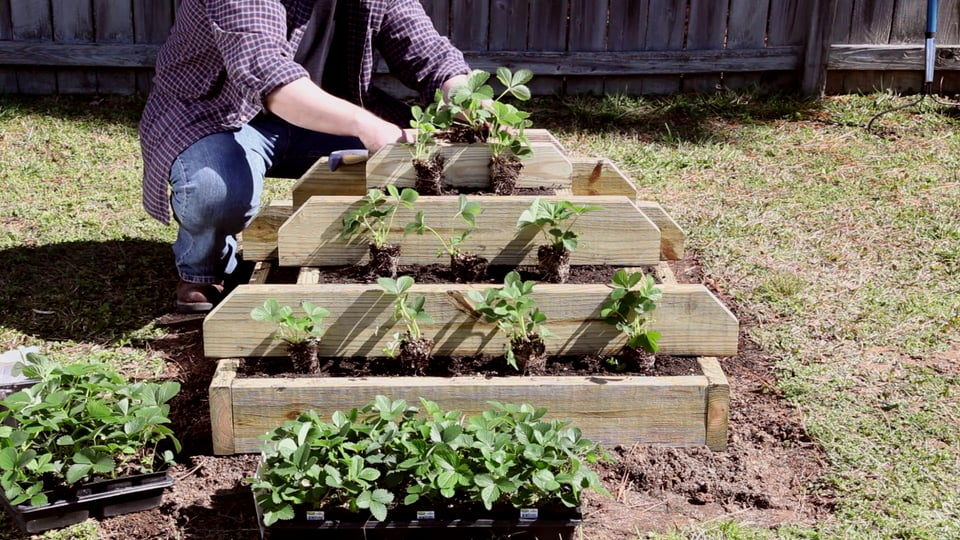 How To Build A Vertical Strawberry Or Herb Pyramid...