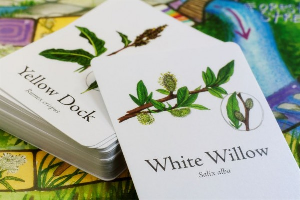 This Cool Board Game Teaches Children About Edible & Medicinal Plants & Herbs...