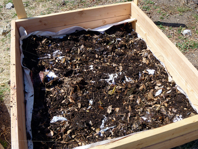 Lasagna Gardening: Here's How To Grow Organic Vegetables Easily (Even Without A Garden!)...
