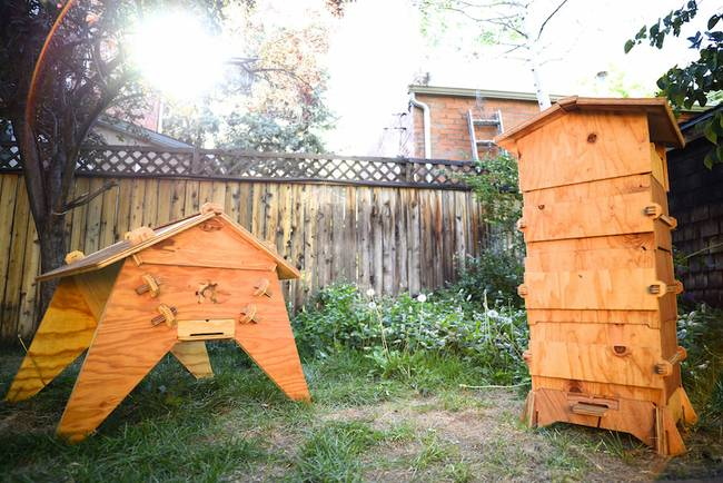 DIY Beekeeping: Download & Print A Smart Beehive Kit With Open Source Beehive...