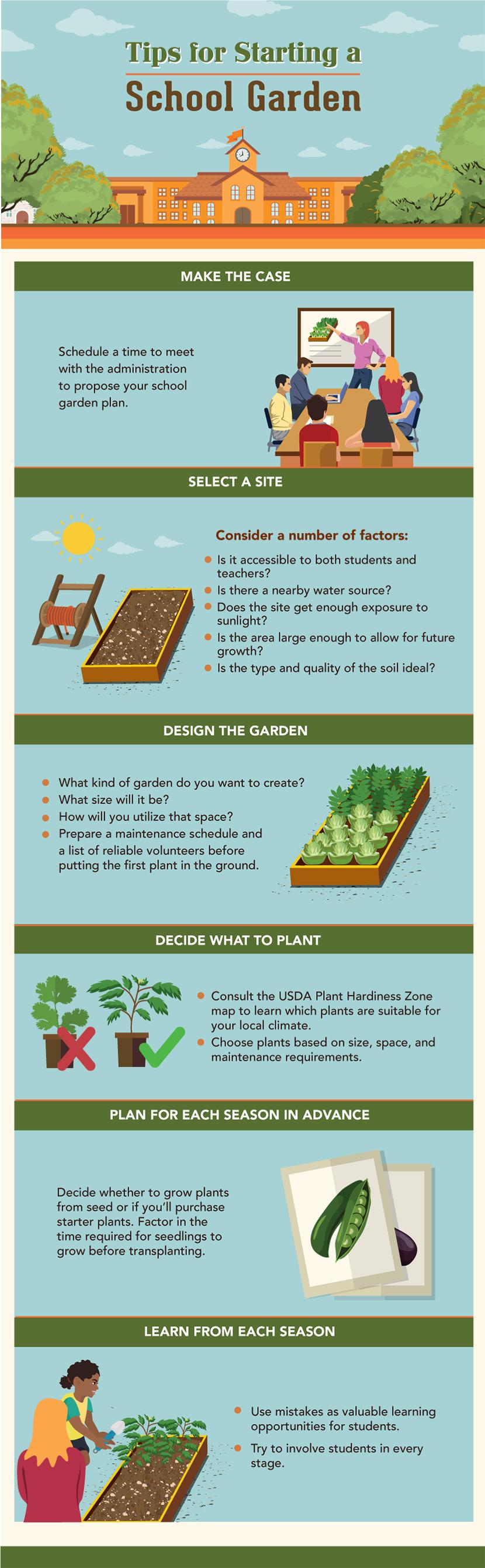 Getting Schooled In The Garden – How To Start A School Garden