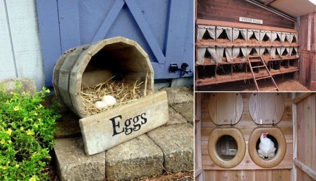 Top 10 Ideas For Chicken Nesting Boxes...