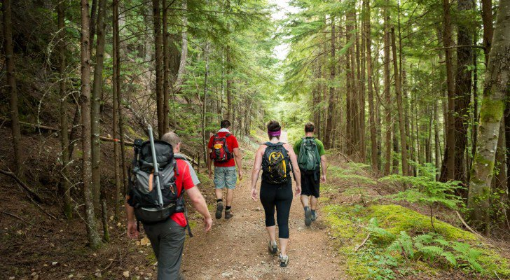 Doctors Explain How Hiking Actually Changes Our Brains...