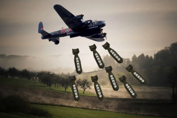 Old Military Planes Repurposed To Drop 900,000 Tree Bombs A Day...
