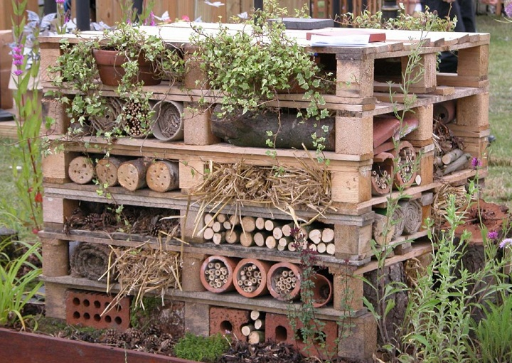 Attract Beneficial Insects & Bees With Your Own Insect Hotel...