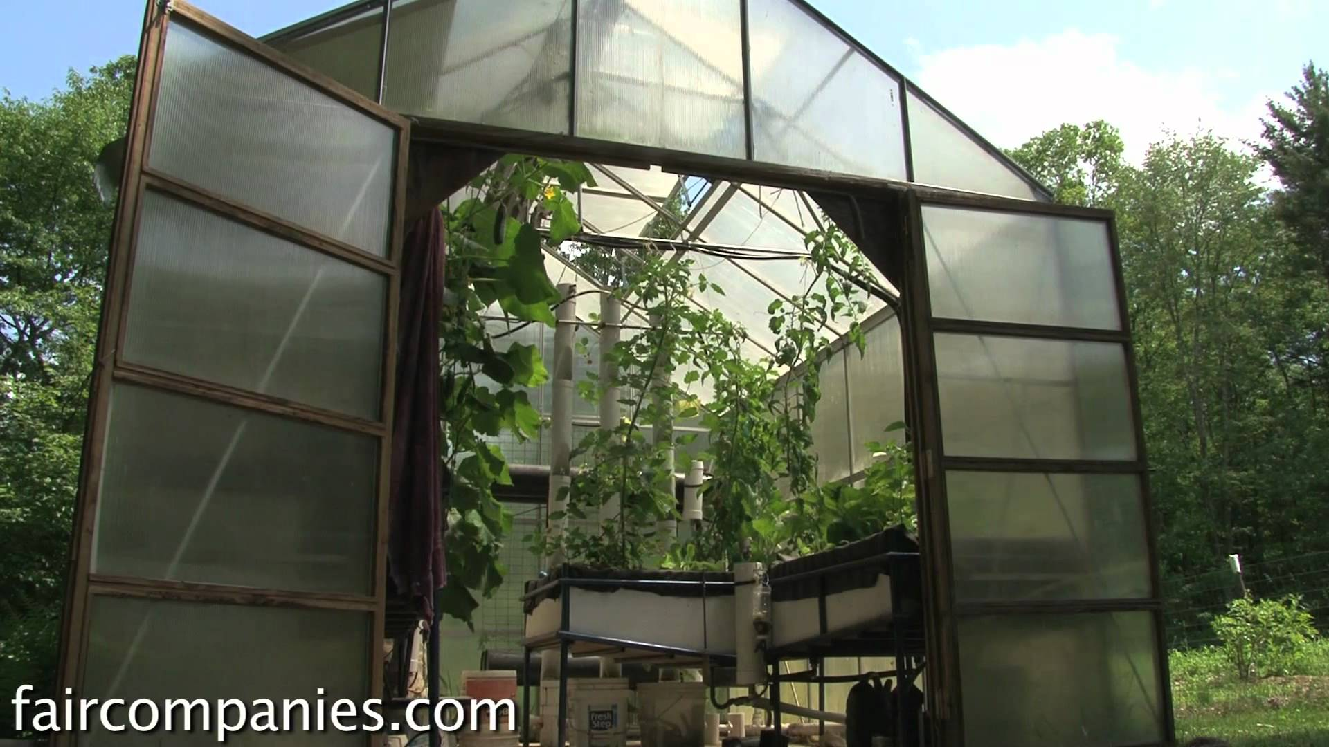 Backyard Aquaponics – A DIY System To Farm Fish With Vegetables...