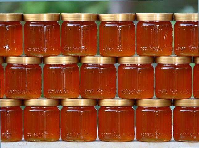 The Hallucinogenic Honey Of Giant Himalayan Bees...