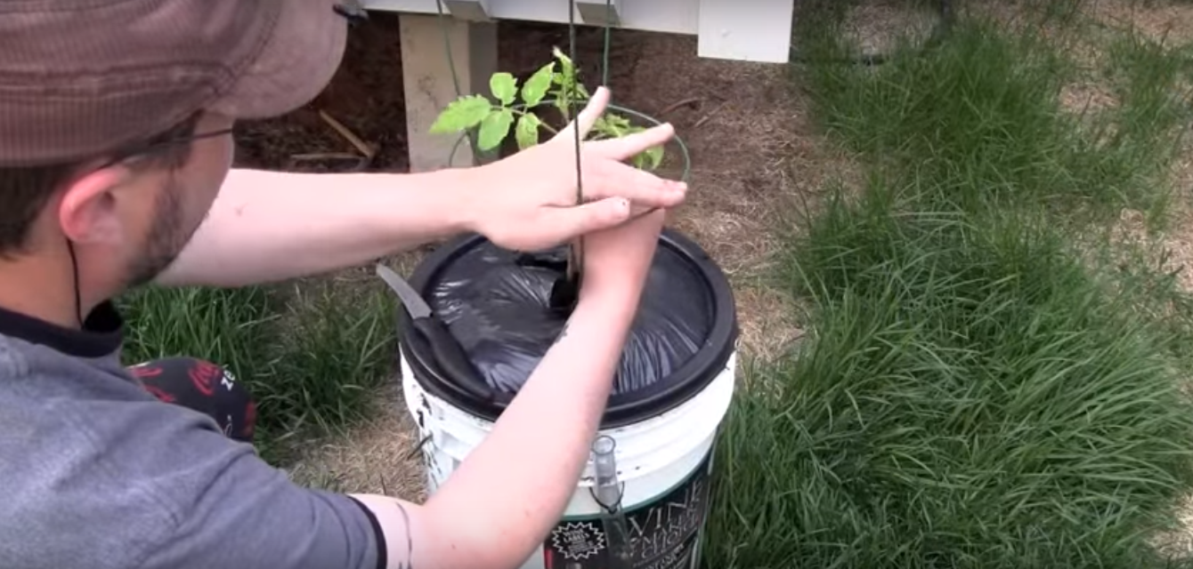 How To Build A DIY Self Watering Container For Your Vegetable Garden.