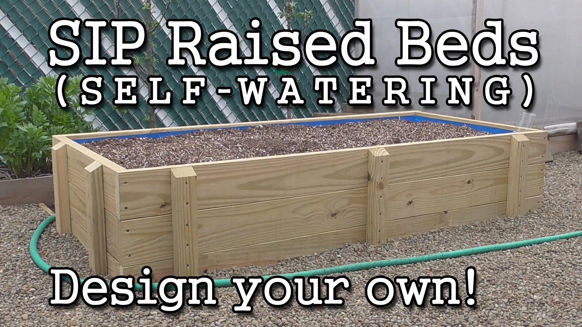 Self Watering Raised Garden Bed Plans