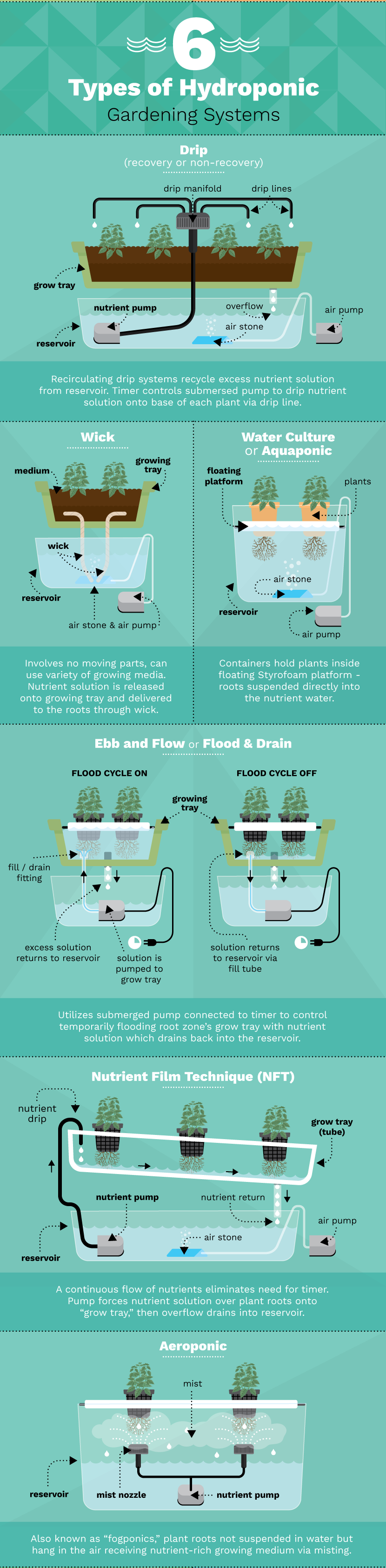 6 Different Hydroponic Gardening Systems For Growing Food Eco