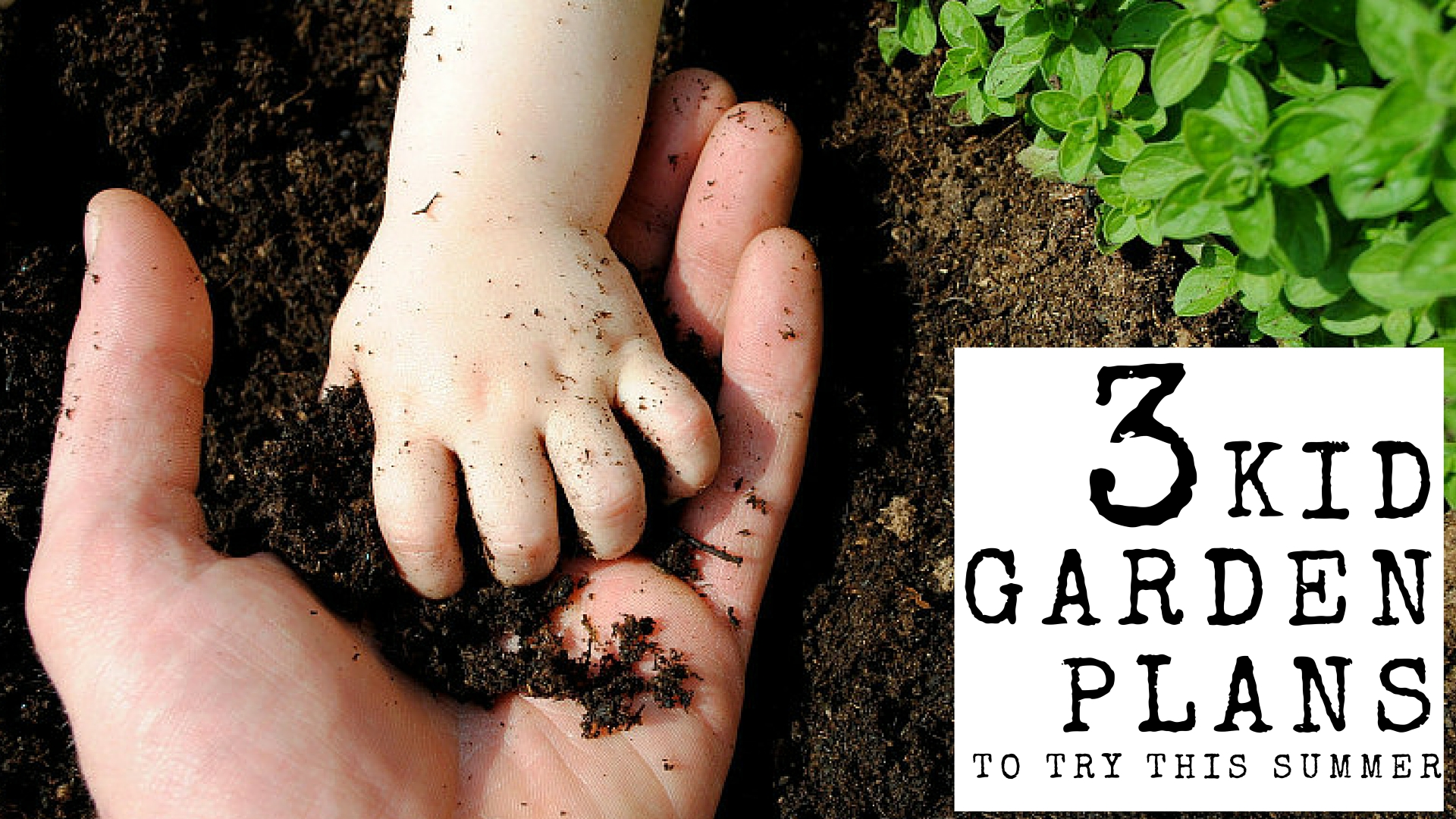 How To Grow An Easy Kids Garden...