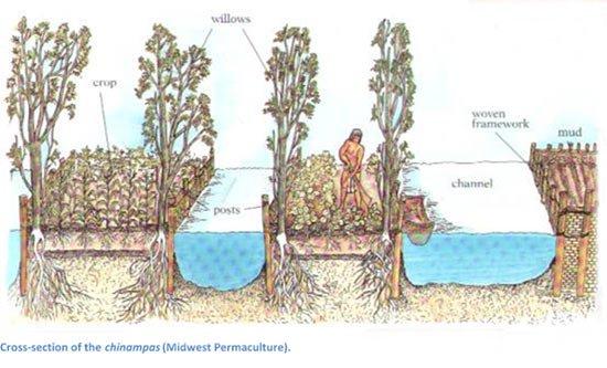 The Ingenious Floating Gardens of the Aztecs...