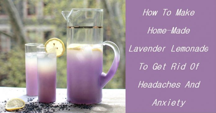 How To Make Home-Made Lavender Lemonade To Get Rid Of Headaches And Anxiety...