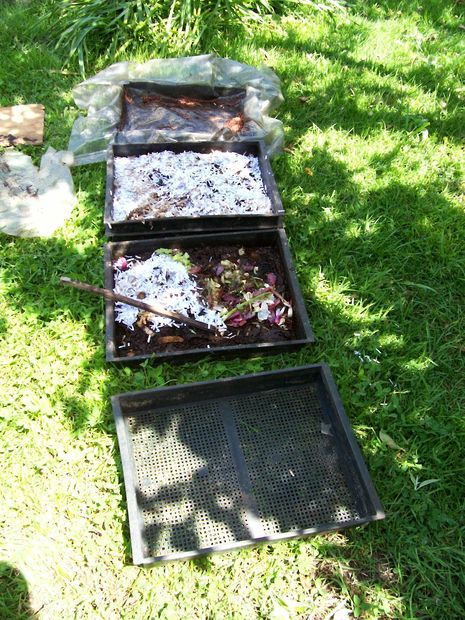 5 dollar, 1/2 hour Worm Composting Bin(s) DIY… - Eco Snippets
