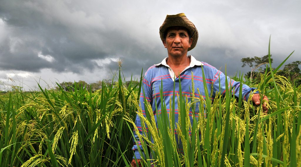 Bolivia To Be Completely Food Independent In 2020 By Investing In Small Farmers...