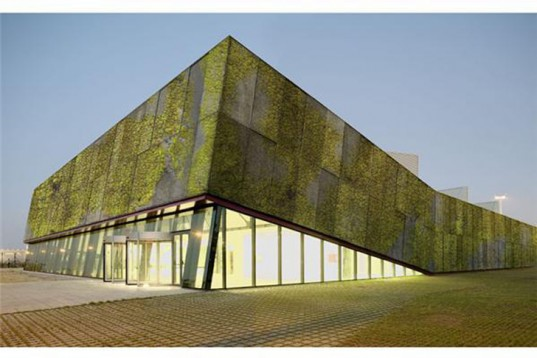 Newly-Developed Concrete Absorbs CO2, Insulates, And Is Also A Vertical Garden...