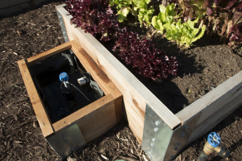 How To Build An Epic Self Watering Garden...