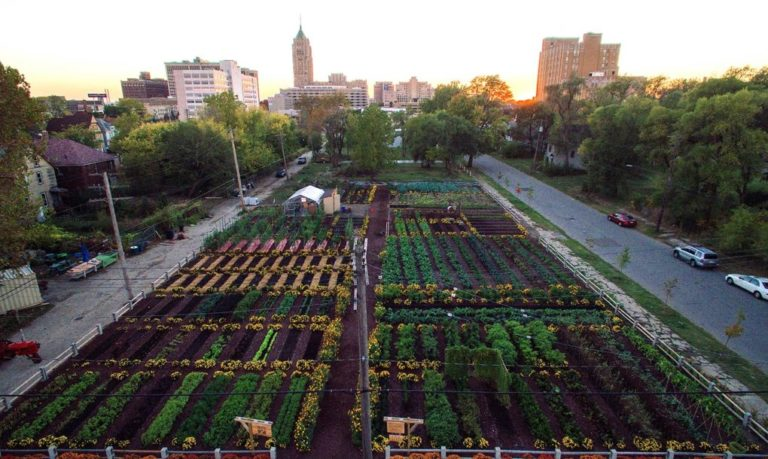 First Urban 'Agrihood' In America Feeds 2,000 Households For Free...