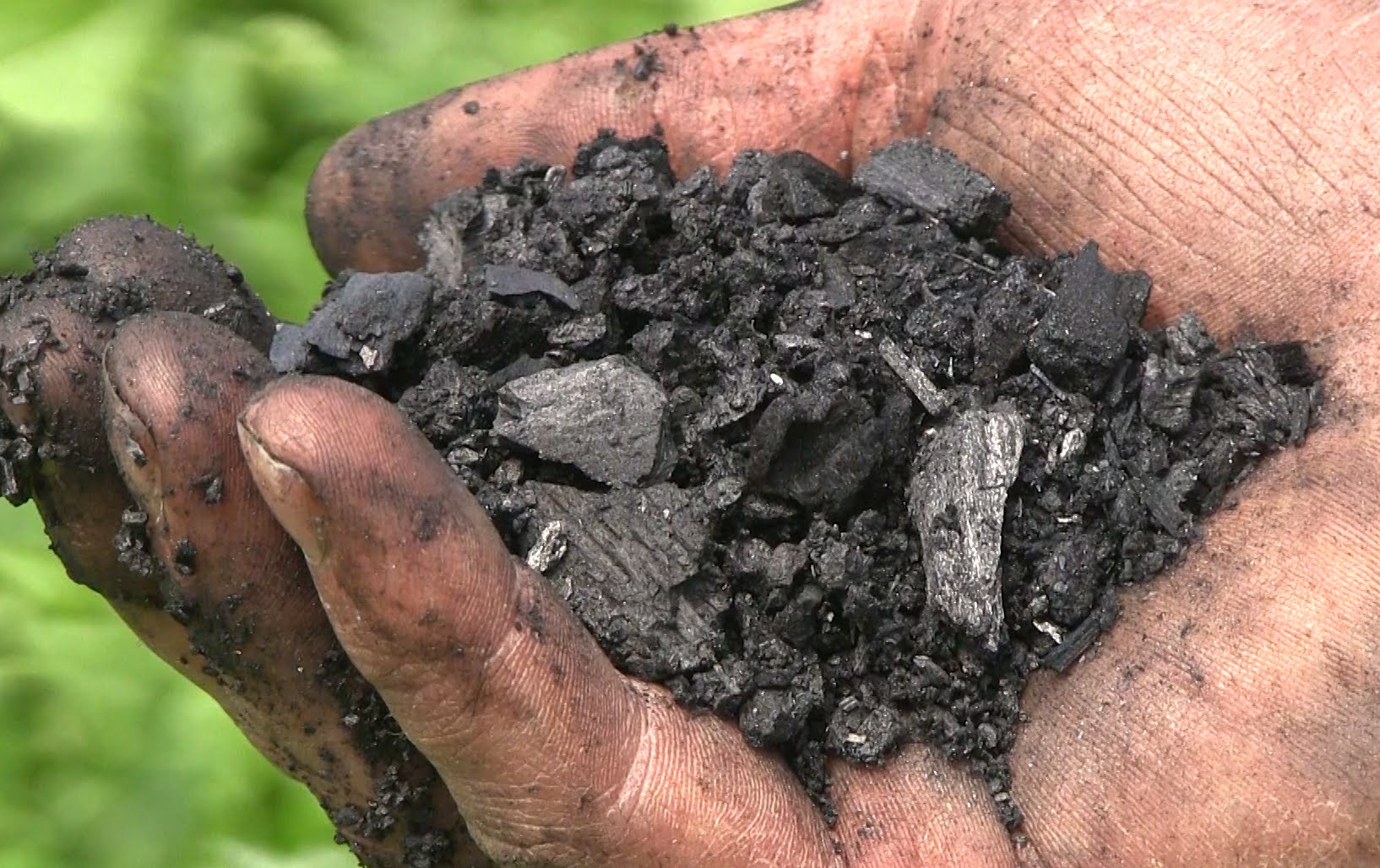 How To Make Biochar For Your Garden...
