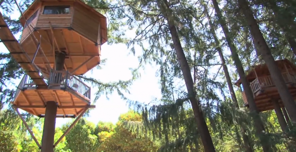 DIY Treehouse Inventor Creates Ewok World In Rural Oregon...