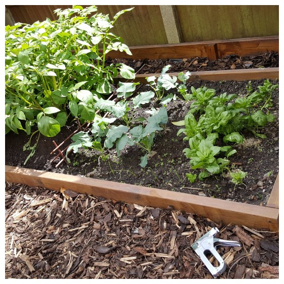 How To Make A 9 Volt Electric Fence To Keep Snails Slug S Out Of Your Garden Beds Eco Snippets