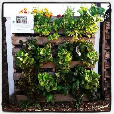 How To Make A Vertical Pallet Garden...