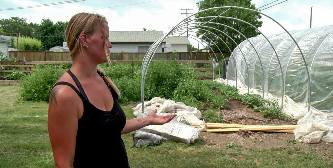 Discover How Urban Farming Works...