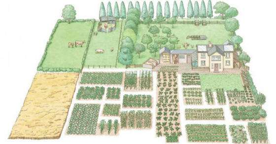 How To Start Your Own 1-Acre, Self-Sustaining Homestead...