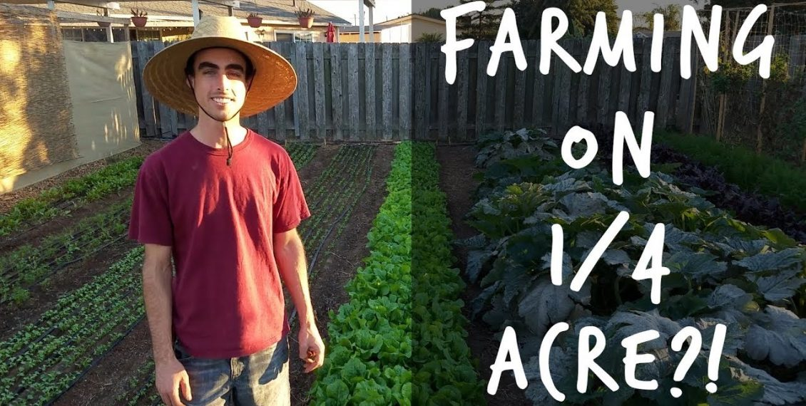 Quitting Your Job To Farm On A Quarter Acre In Your Backyard...
