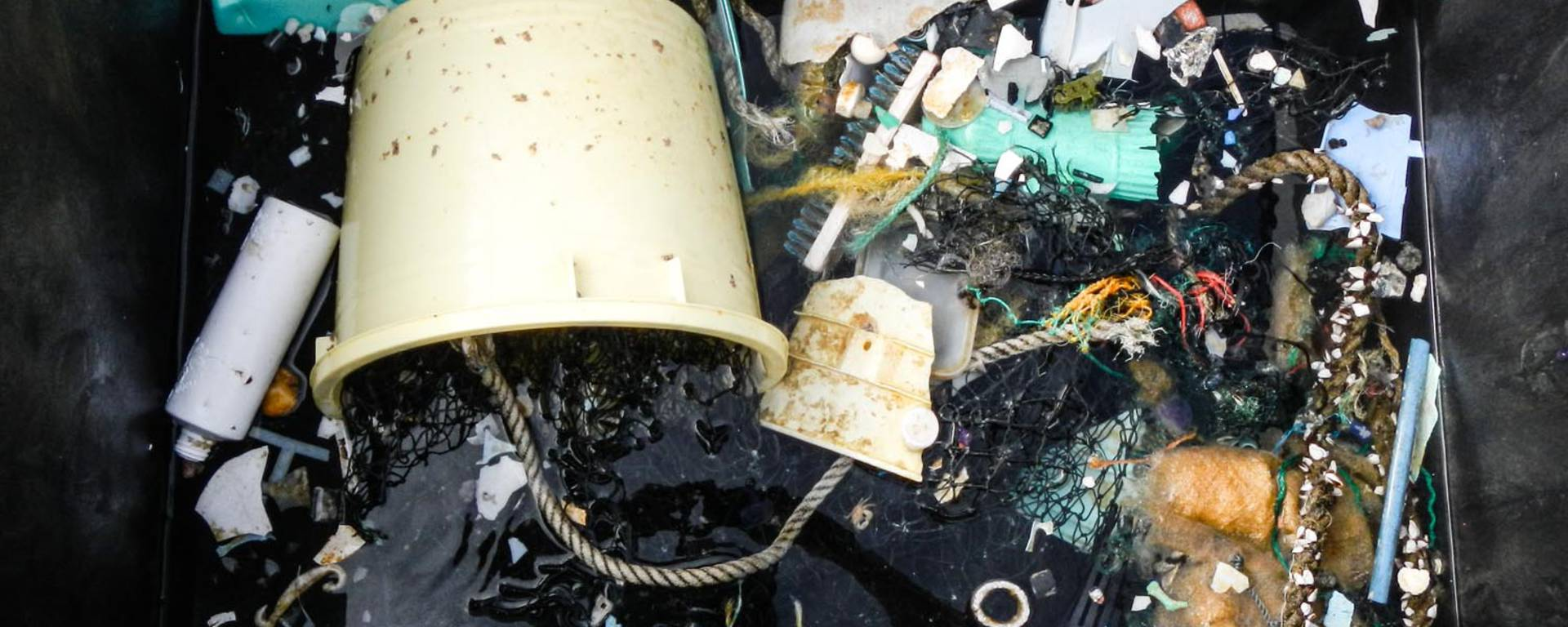 Great Pacific Garbage Patch Is Growing At An Exponential Rate...