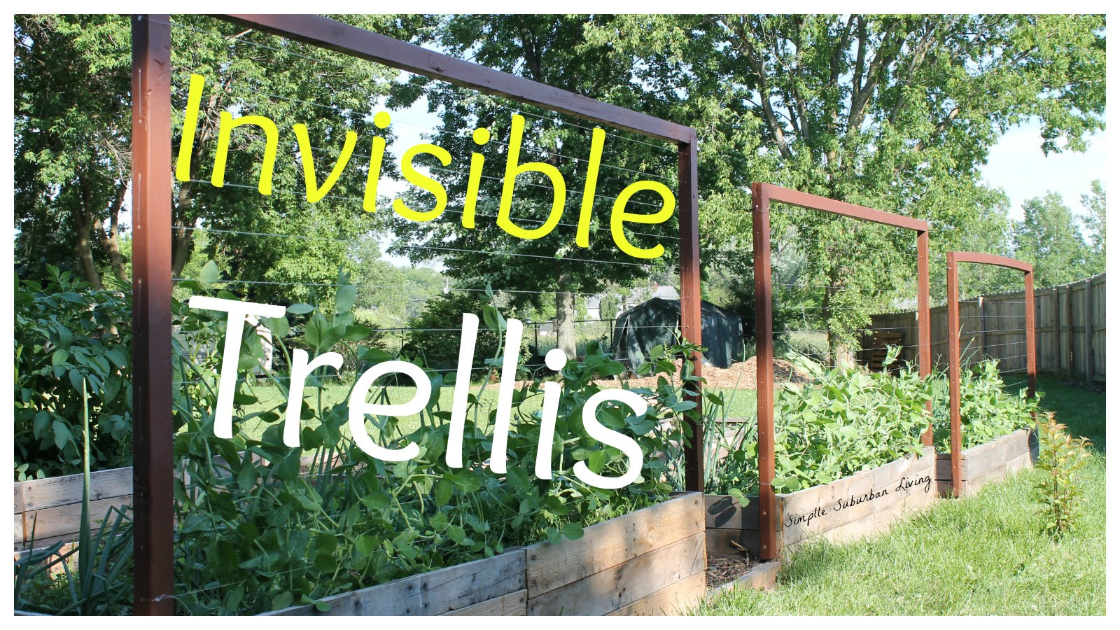 Invisible Trellis – A Cheap Raised Bed Trellis System...